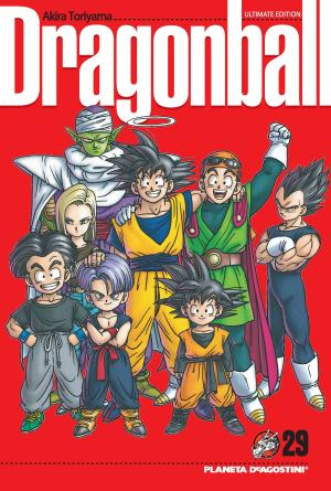 Libro Dragon Ball Nº29/34 en PDF
