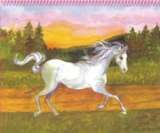 Portada de Princess Top Horses Coloring Book (ref. T-651-002)
